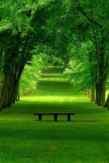 silenzioso paesaggio