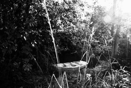 barca bosco