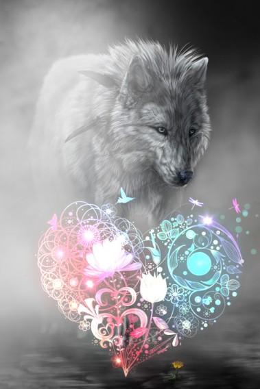 cuore lupo