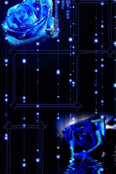 rose notte