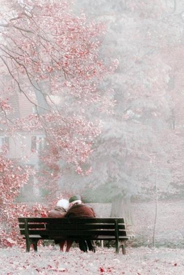 anziani su panchina