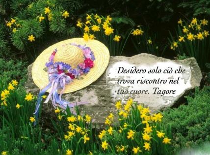 cappellino e fiori