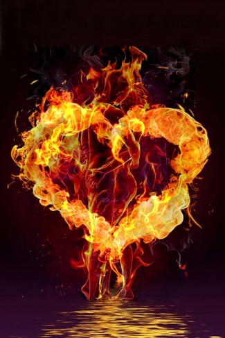 the burning love
