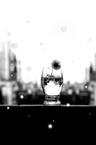margherita nel bicchiere