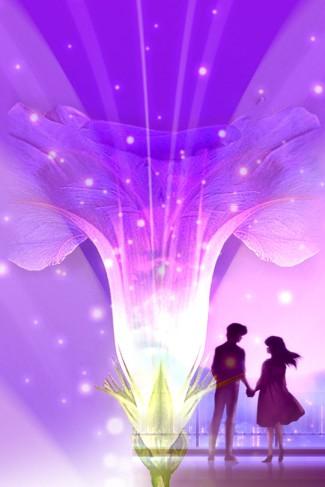 radice amore