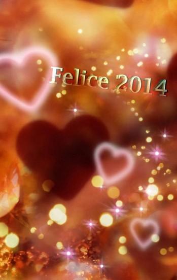 felice 2014