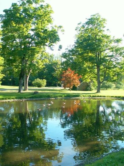 natura paesaggio