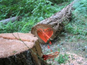 albero cuore infranto